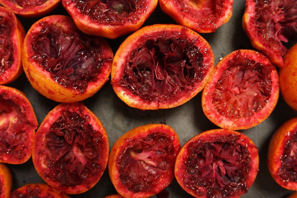 Juiced blood oranges | nomad with cookies