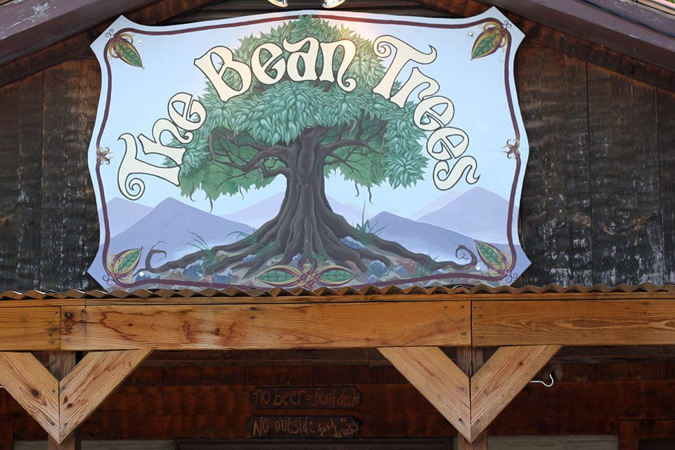 Bean Trees in Hartford, TN | Nomad with Cookies