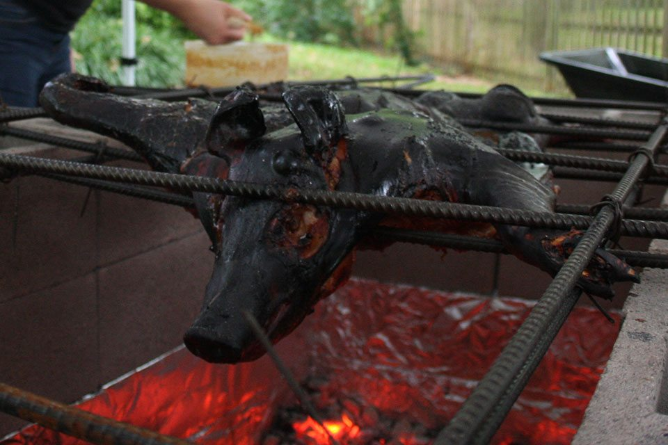 What not to do at a pig roast