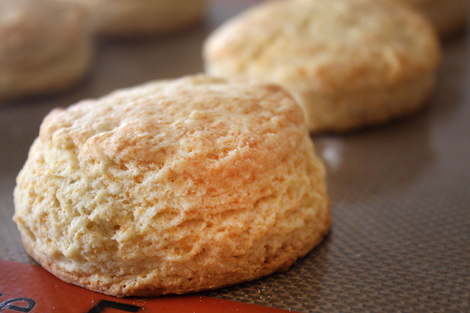 Texas lard and butter biscuit recipe